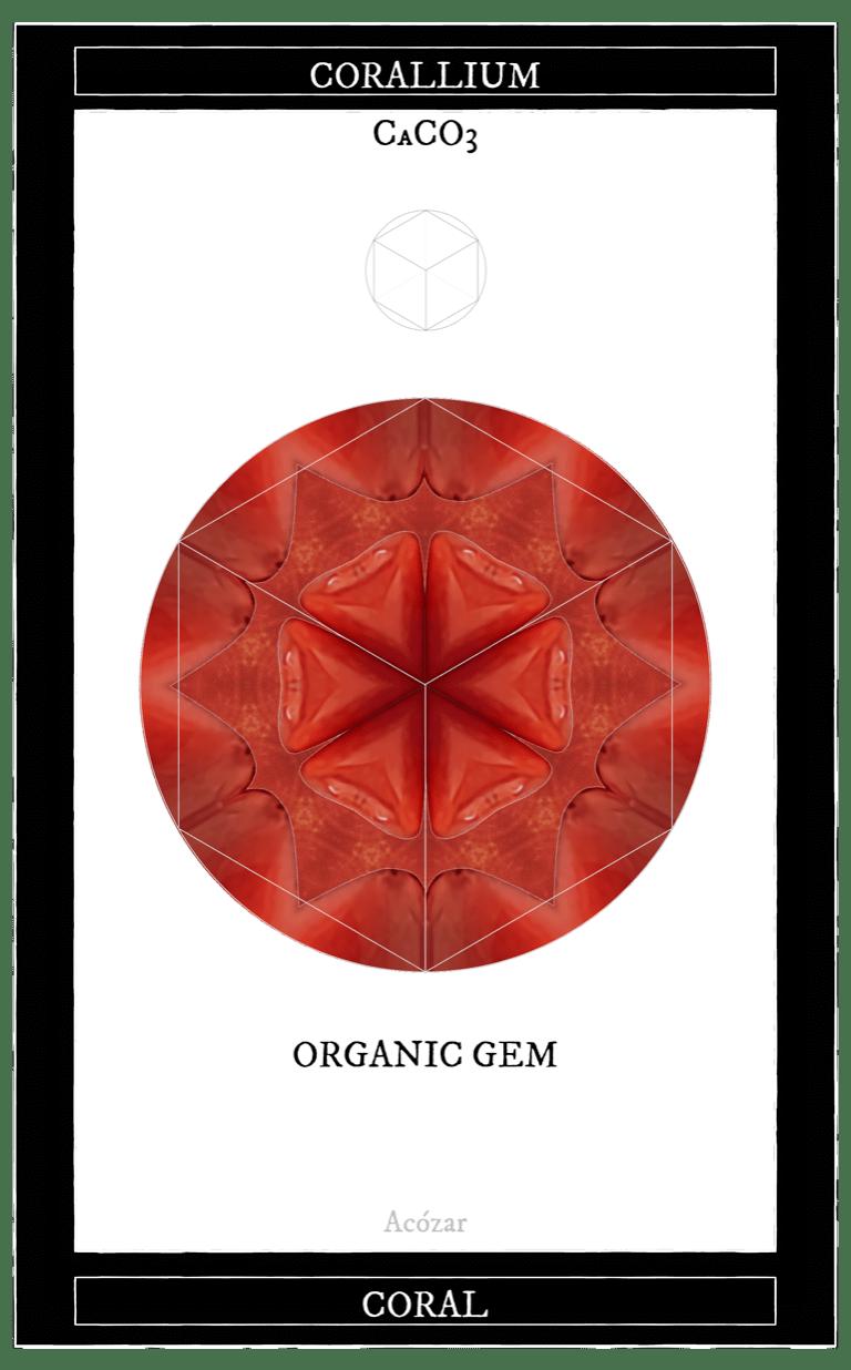 Coral (12 gemmes)